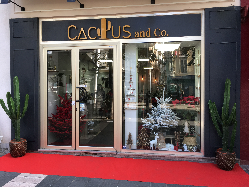 CACTUS CO